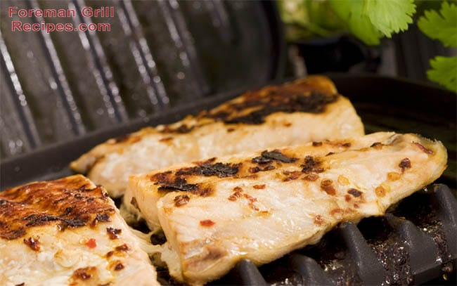 Easy Honey Ginger Grilled Salmon Recipe