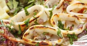 Grilled calamari on foreman grill